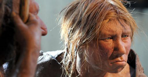 Neanderthals and Humans