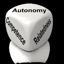 Autonomy Relatedness Competence
